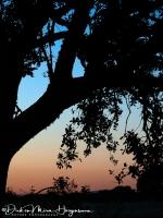 Zonsondergang op Sierra de Piatones1-MDH