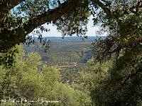 Doorkijk op Monfrague-MDH