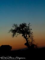 Zonsondergang op Sierra de Piatones2-MDH