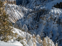 Yellowstone Canyon-MD