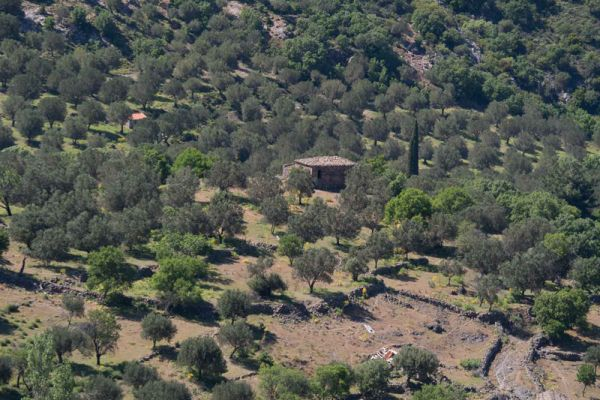 lesbos-binnenland-lesvos-inland-with-olive-trees-20150527-121792493908F9BAC5-D723-603E-12EB-76F5752050B8.jpg