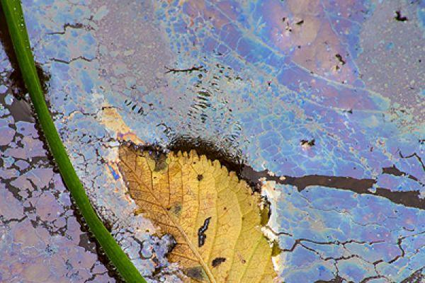 kwelwater-seep-hydrology-20150113-1522677624128208E8-5D5B-9EC9-9B7C-B1AED4F64DE1.jpg