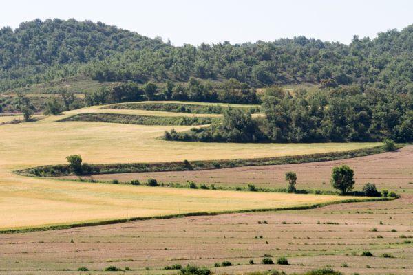 lijnenspel-in-spaans-landschap-spanish-pyrenean-landscape-7-20141219-13056179382BD3AD22-B349-C5AE-3FB2-FA09F82BA918.jpg