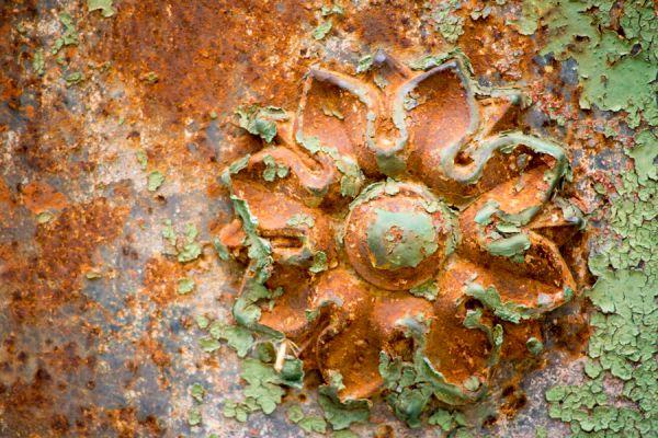 metalen-bloem-metal-flower-20141219-1576350126AE419F35-5B1E-BDF2-B080-7C9C0FFB669F.jpg