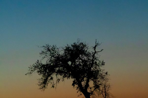 zonsondergang-op-sierra-de-piatones2-mdhE8A7AF16-82D9-4318-8614-D660B526F98B.jpg