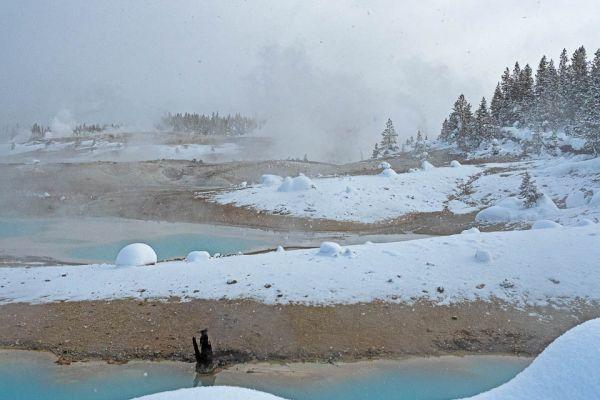 norris-geyser-basin-md806C9B78-8544-328C-6DED-48BBB7B27147.jpg