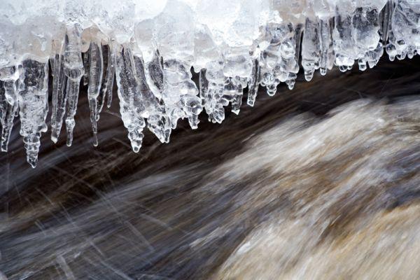 ijspegels-boven-beek-icicles-under-a-creek-eiszapfen-unter-ein-bach-20160501-102710867700318138-257B-B6A1-DF4D-93B1B66B52D3.jpg