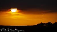 Zonsondergang- Sunset-Sonnenuntergang-Leica DG 100-400mm F4.0:6.3 @195,0 F5,6 1 :640 sec ISO 125