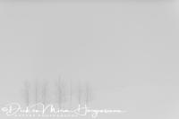 laugarvatn_-_bomen_in_sneeuwstorm_-_trees_in_a_snowstorm_20150224_1589473942