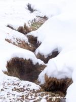geysir_warmwater_beekje_-_hot_water_stream_20150224_1839670487