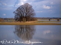 langs_de_ijssel_along_the_river_ijssel_20141220_1782110024