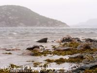fjorden_kust_fjord_coast_3_20141219_1506518762