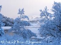 fjorden_kust_fjord_coast_6_20141219_1478673267