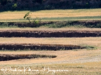 lijnenspel_in_spaans_landschap_spanish_pyrenean_landscape_20141219_1737092718