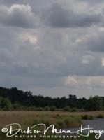 landschap_in_de_la_brenne_landscape_la_brenne_france_20141219_2083311132