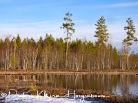 meertje_met_reflectie-lake-see_20160501_1736460863