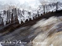 ijspegels_boven_beek-icicles_under_a_creek-eiszapfen_unter_ein_bach_20160501_1027108677