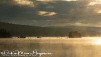 ochtend_mist_-_morning_fog_-_morgen_nebel_20171015_1879648022